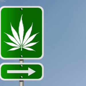 Weed Across America – Know Before You Go (Part 1 of 3)